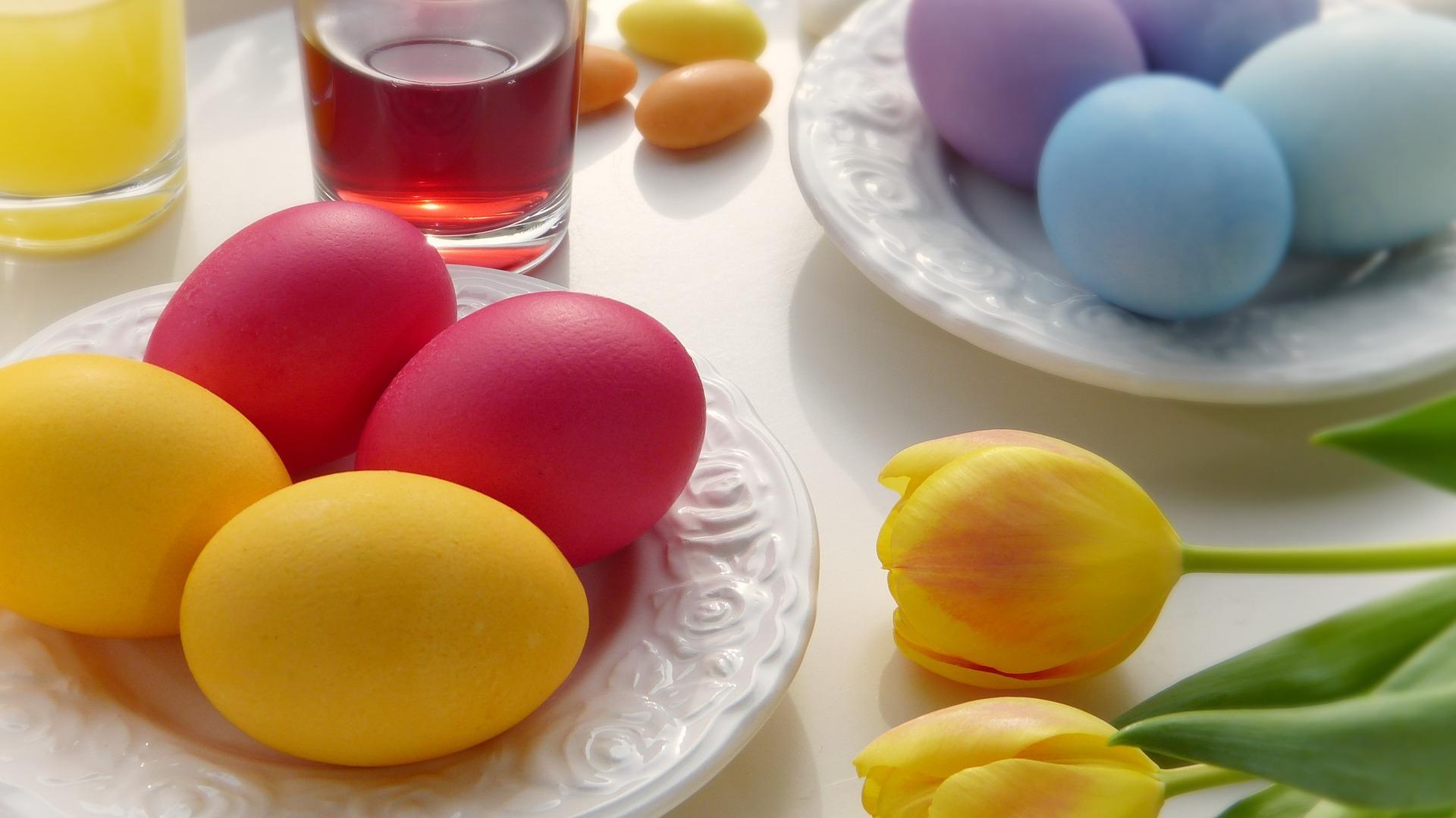 egg-3165476_1920